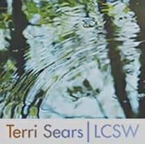 Terri Sears - Client Success Story